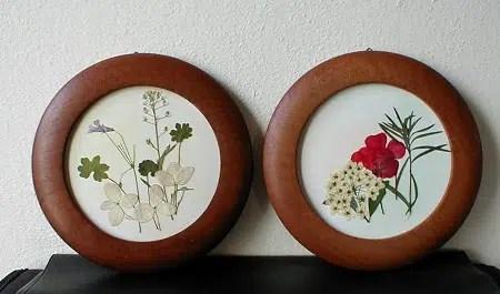 Cuadro hecho con flores secas