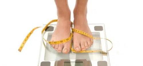 ¿Cuáles son los alimentos altos en calorías?
