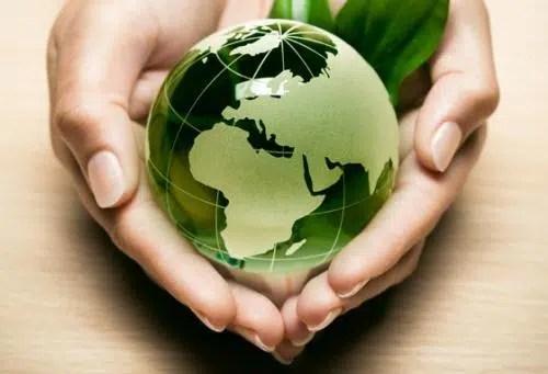 Cuidar el medio ambiente, responsabilidad de todos