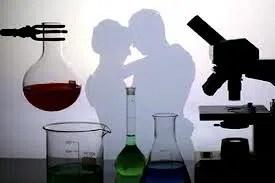 La relación entre la ciencia y el amor
