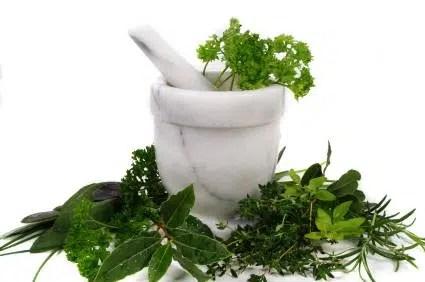 Las hierbas que limpian el cuerpo de toxinas