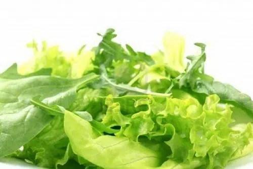 Lechuga: un alimento ligero, saludable y muy refrescante