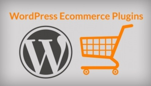 Install the Right WP E-Commerce Store Plugins