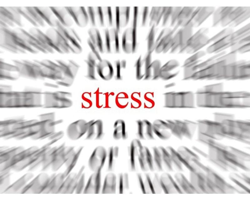 Stress au travail : le 28 avril, Journée Mondiale sur la sécurité et la santé au travail