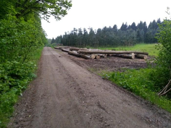 Sentier danois