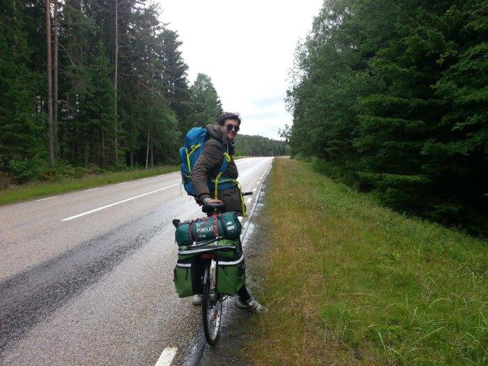 Forêt de sapin proche de la frontière norvégienne