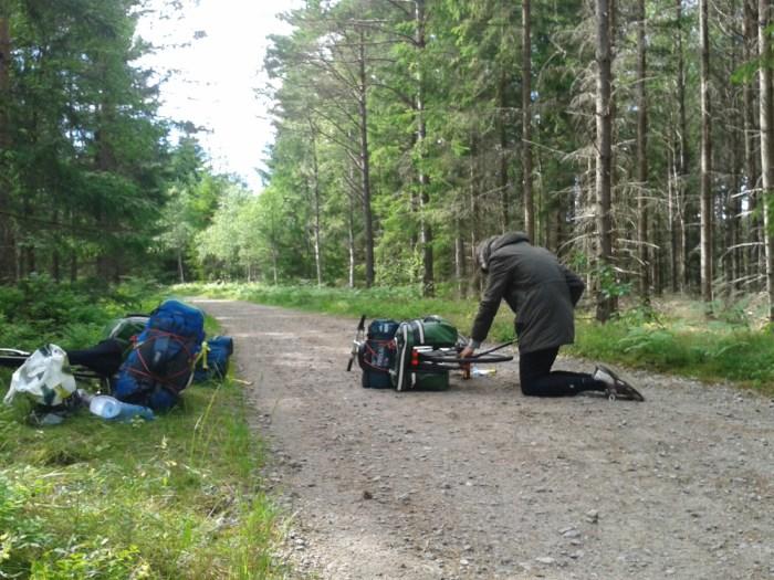 Répération vélo forêt Scandinavie