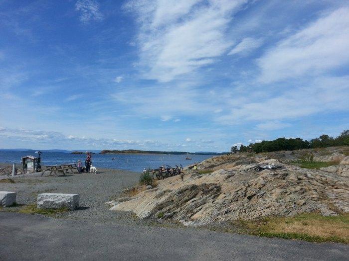 Fuglevik