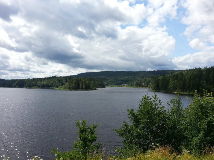 Grand lac suédois