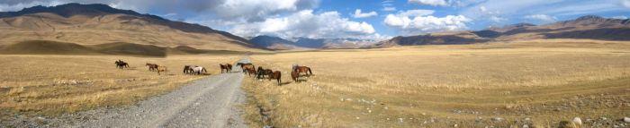 Paysage kirghise
