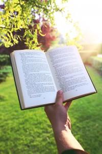 Lire un livre en voyage