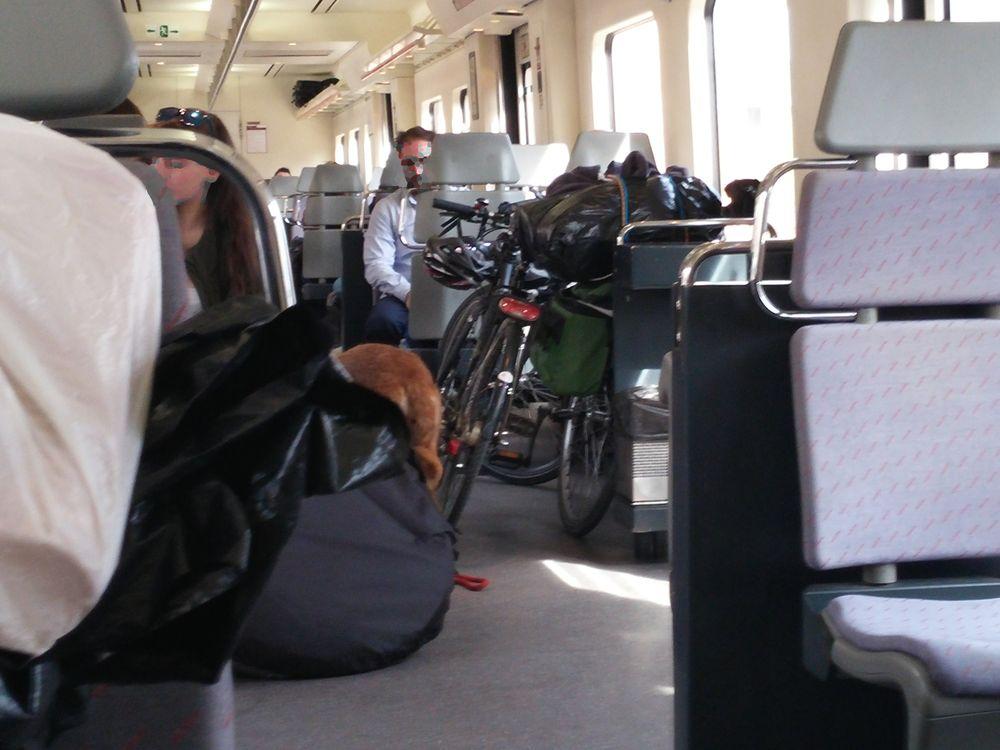 Transporter son vélo dans les trains français et espagnols