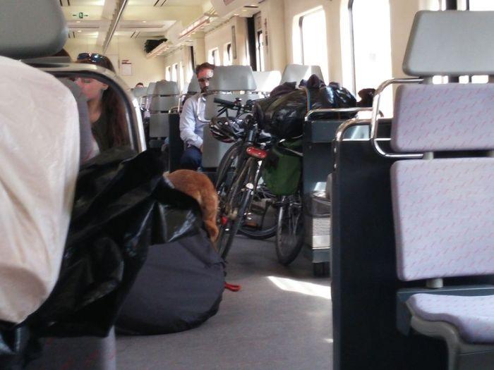 Espace vélo dans le regional express d'Albacete à Valencia