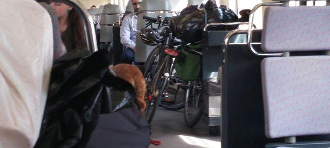 Bilan du voyage espagnol : transport des vélos dans les trains