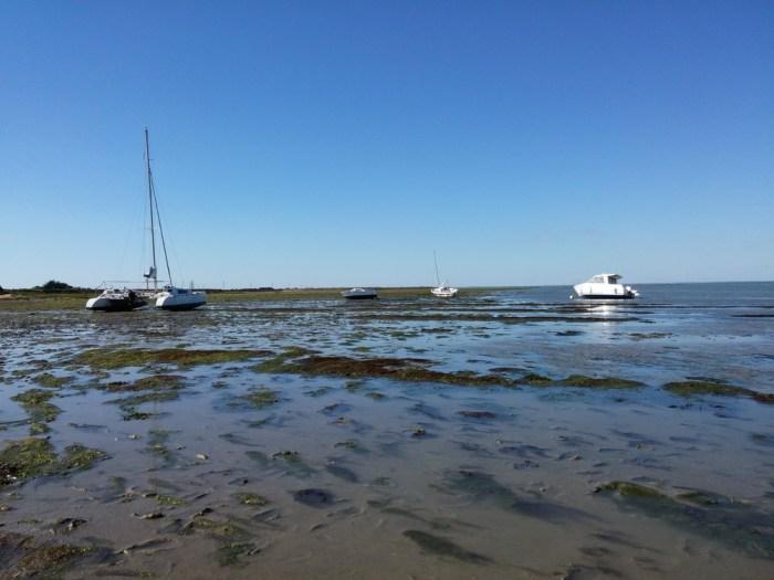 Marée descendante à Noirmoutier