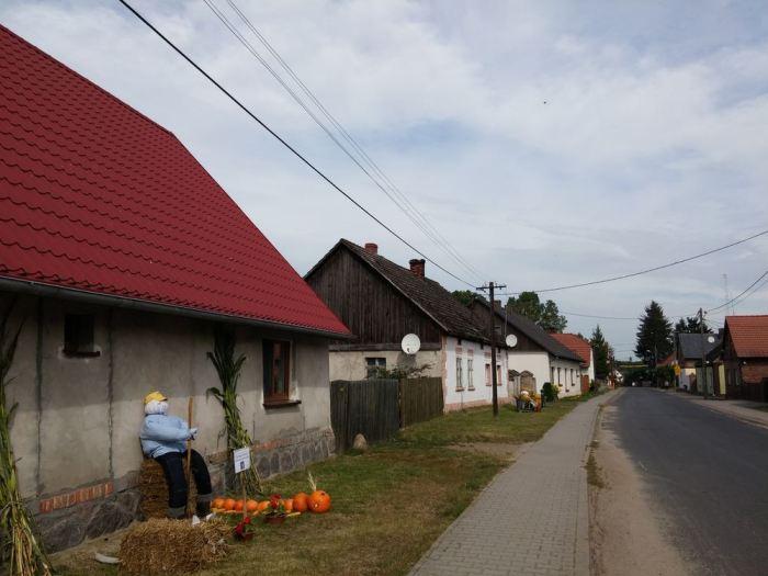 Route goudronnée de village en Pologne