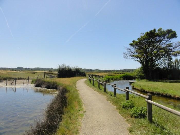 Marais Vendée Vélodyssée