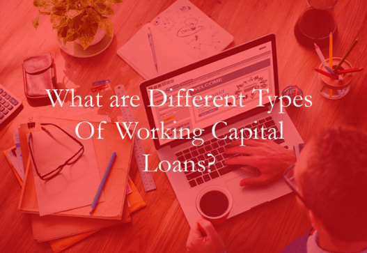 What are different types of Working Capital financing ?