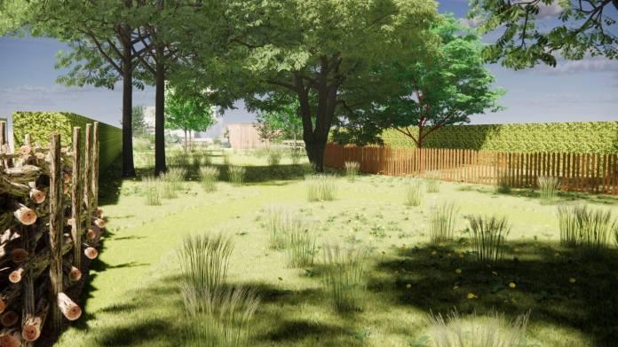 natuurrijke tuin met bloemenweide en volwassen bomen
