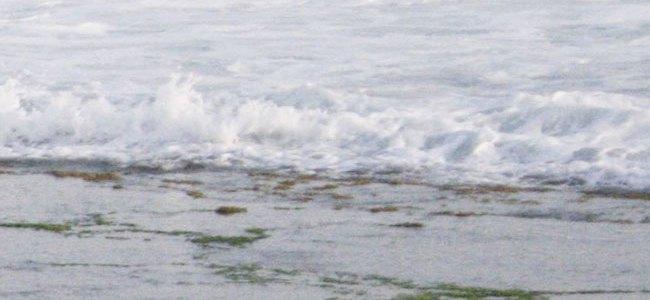 Trenggole Beach
