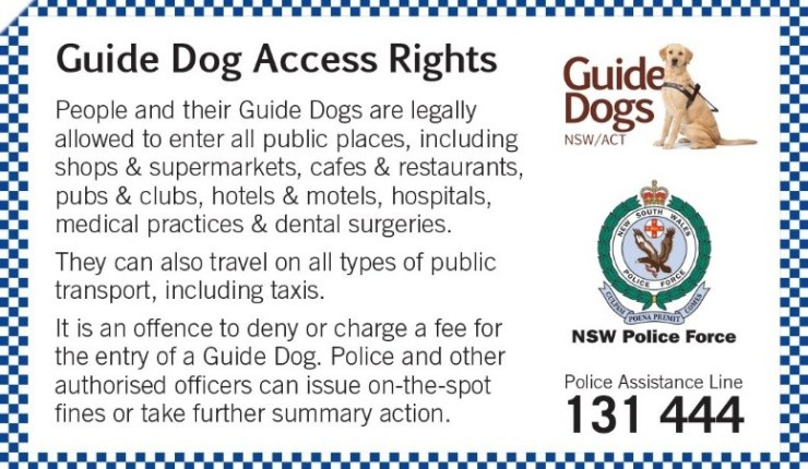 It's time to end Guide Dog discrimination – OUT & ABOUT – Eating Out