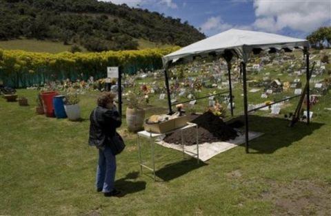 cementerio canino