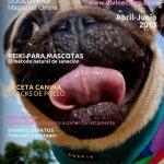 Divine Chien: revista canina
