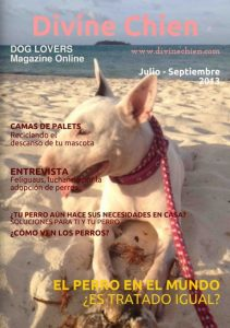 Divine Chien revista para perros