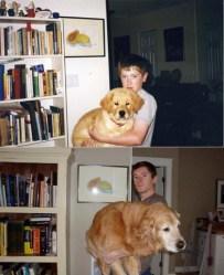 perros antes y después