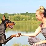 no te enamores de una mujer que ama los perros