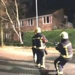 perro ayuda a bomberos