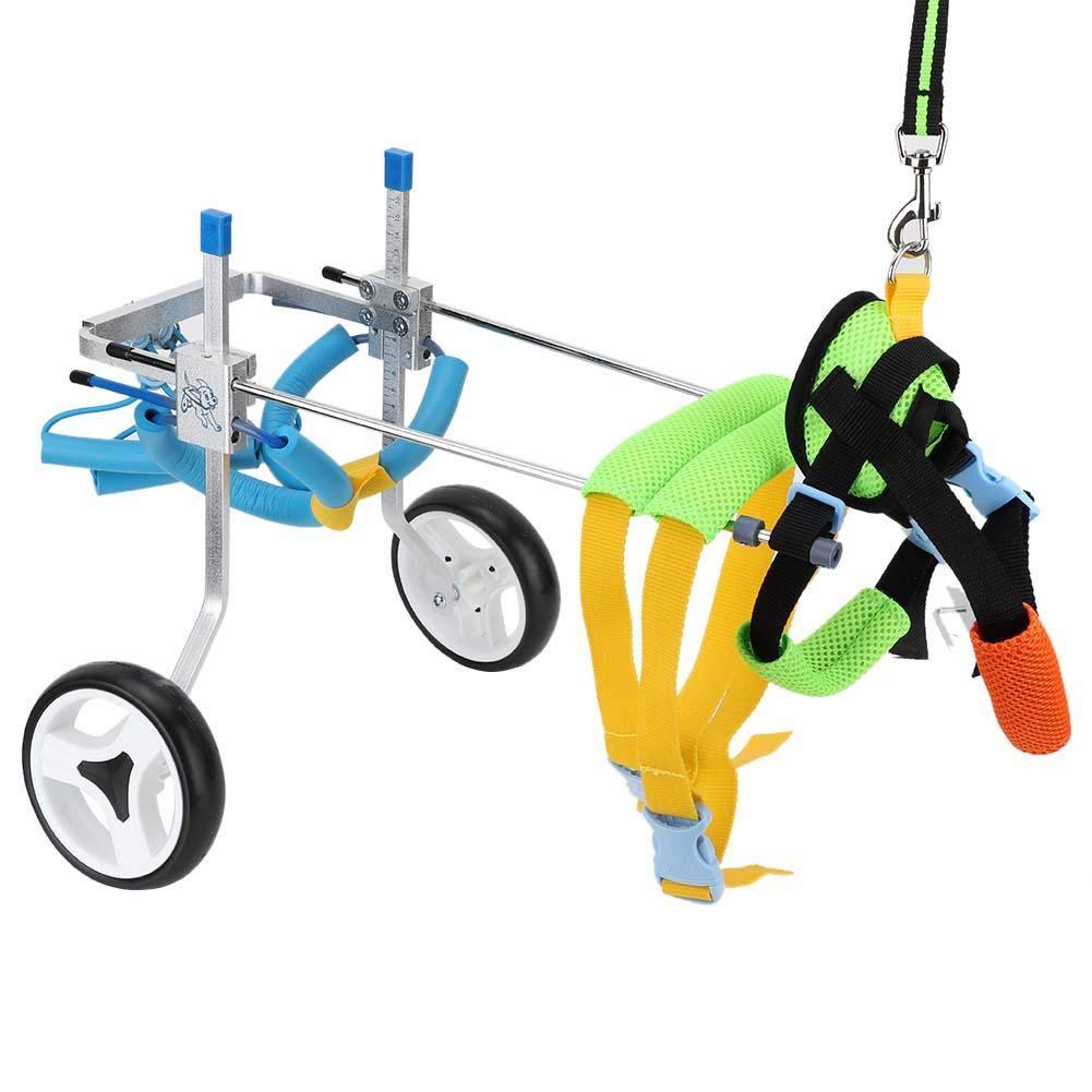 sillas de ruedas para perros discapacitados