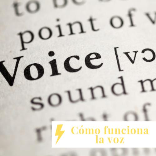 encantar con tu voz cursos online de canto curso como funciona la voz