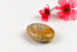 Crazy Lace Agate Palm Stone