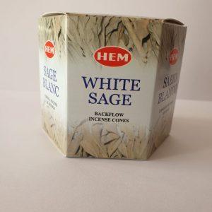 Backflow Cones- White Sage 40's