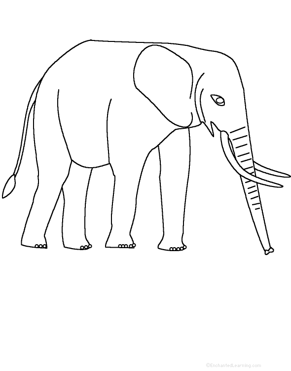 Elephants at EnchantedLearning.com