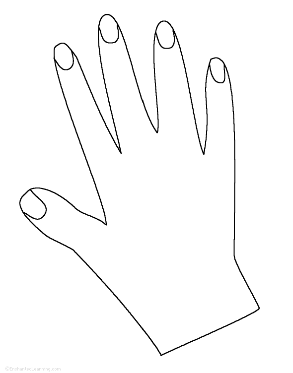 Hand Tracing/Cutting Template: EnchantedLearning.com