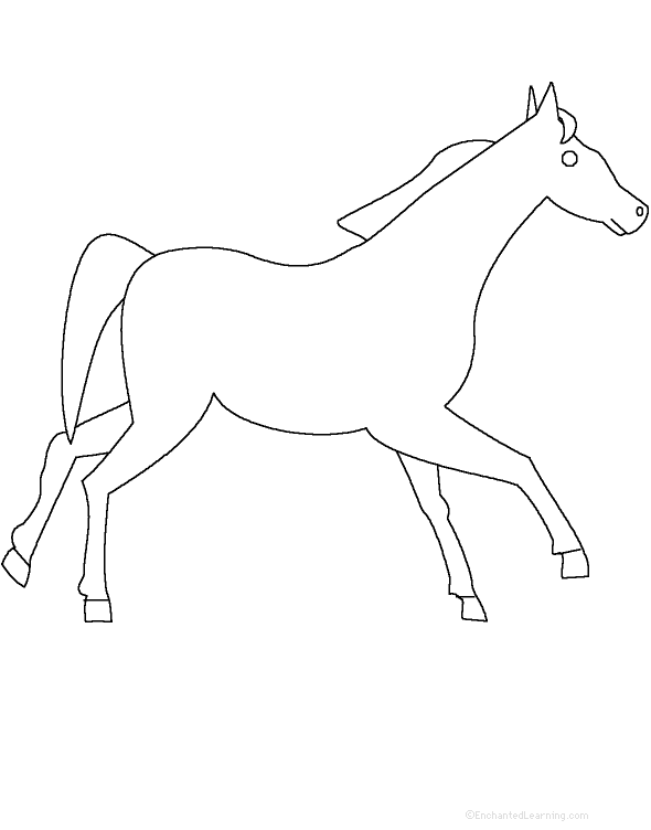 Horse homework worksheets