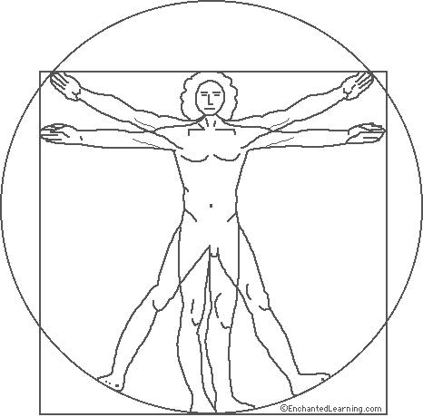 Leonardo da Vinci: Proportions of the Human Figure
