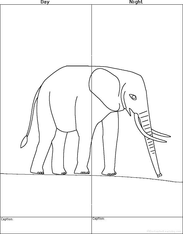 Elephants at EnchantedLearning.com