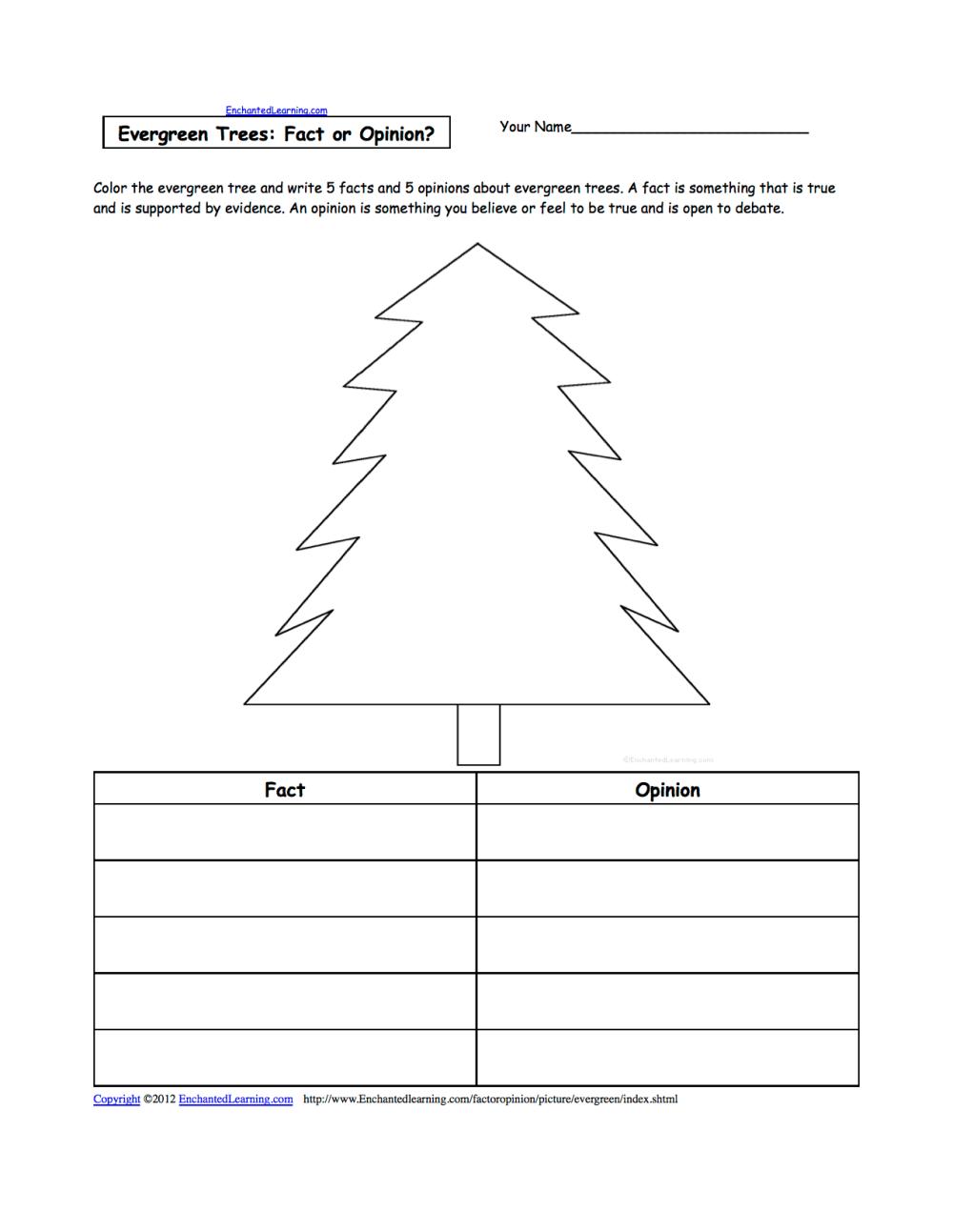 medium resolution of diagram of an evergreen