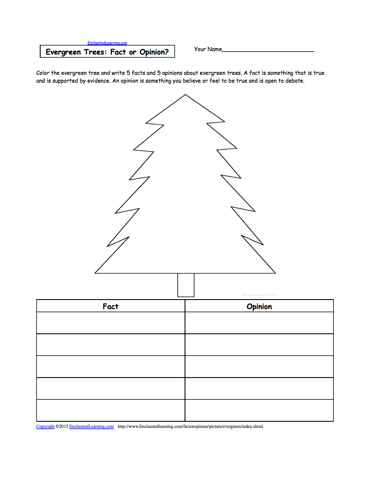 hight resolution of diagram of an evergreen