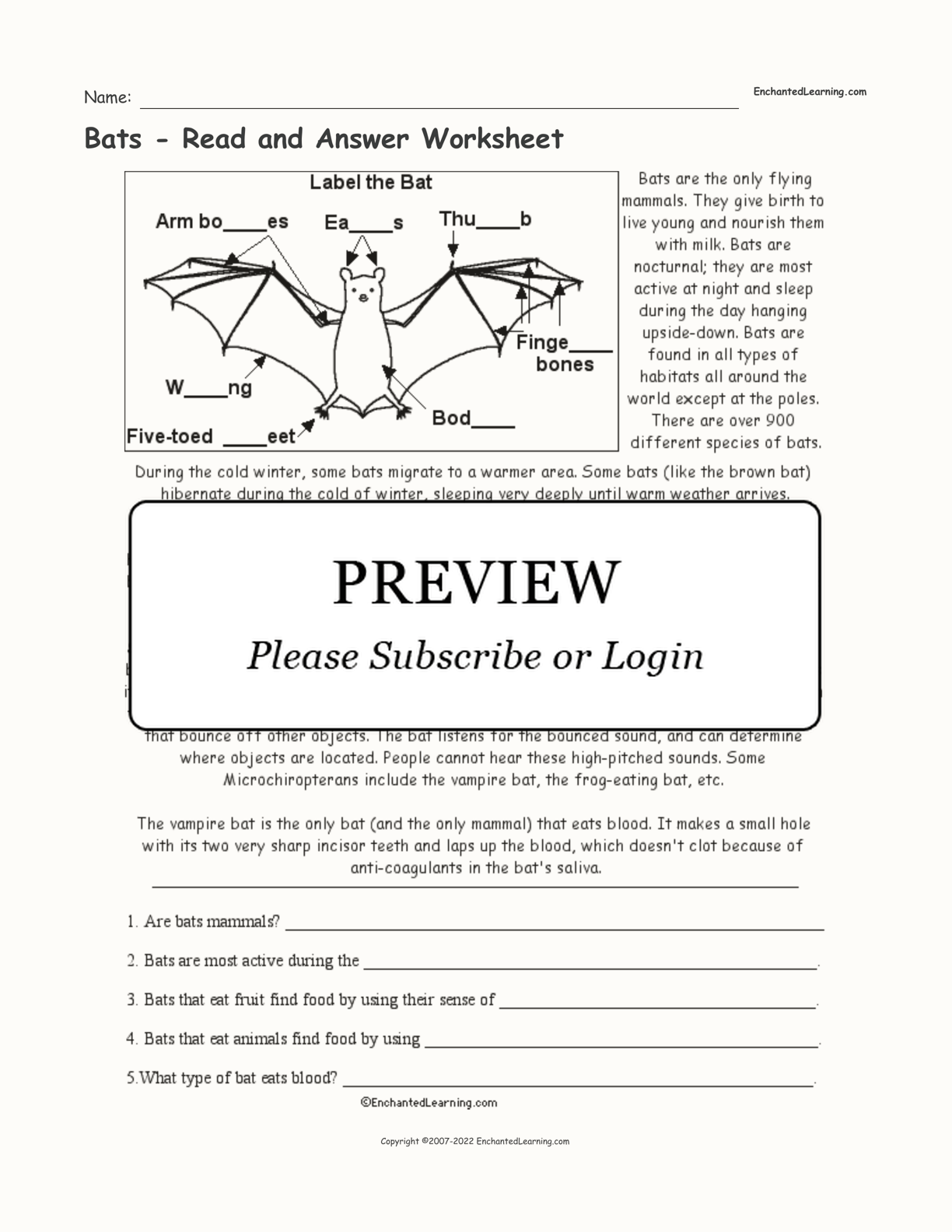 hight resolution of Bats - Read and Answer Worksheet - Enchanted Learning