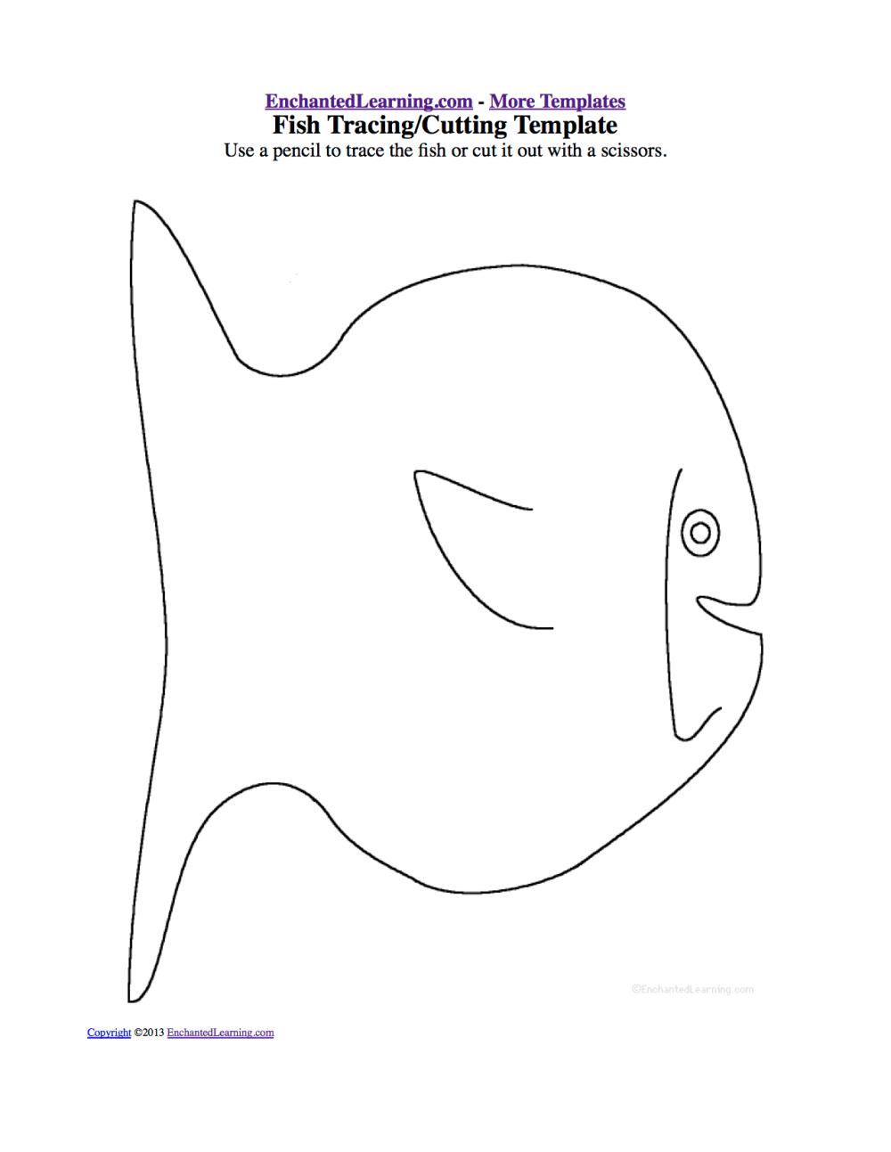 medium resolution of fish