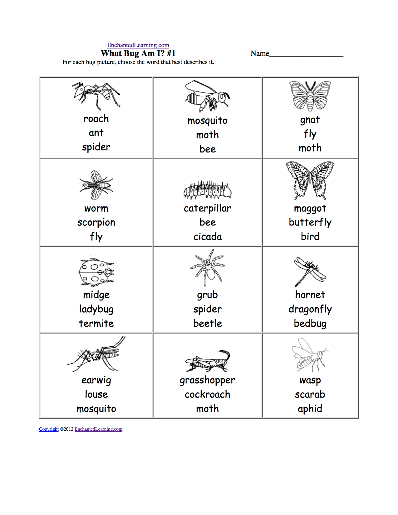 Animals Multiple Choice Spelling Words At Enchantedlearning
