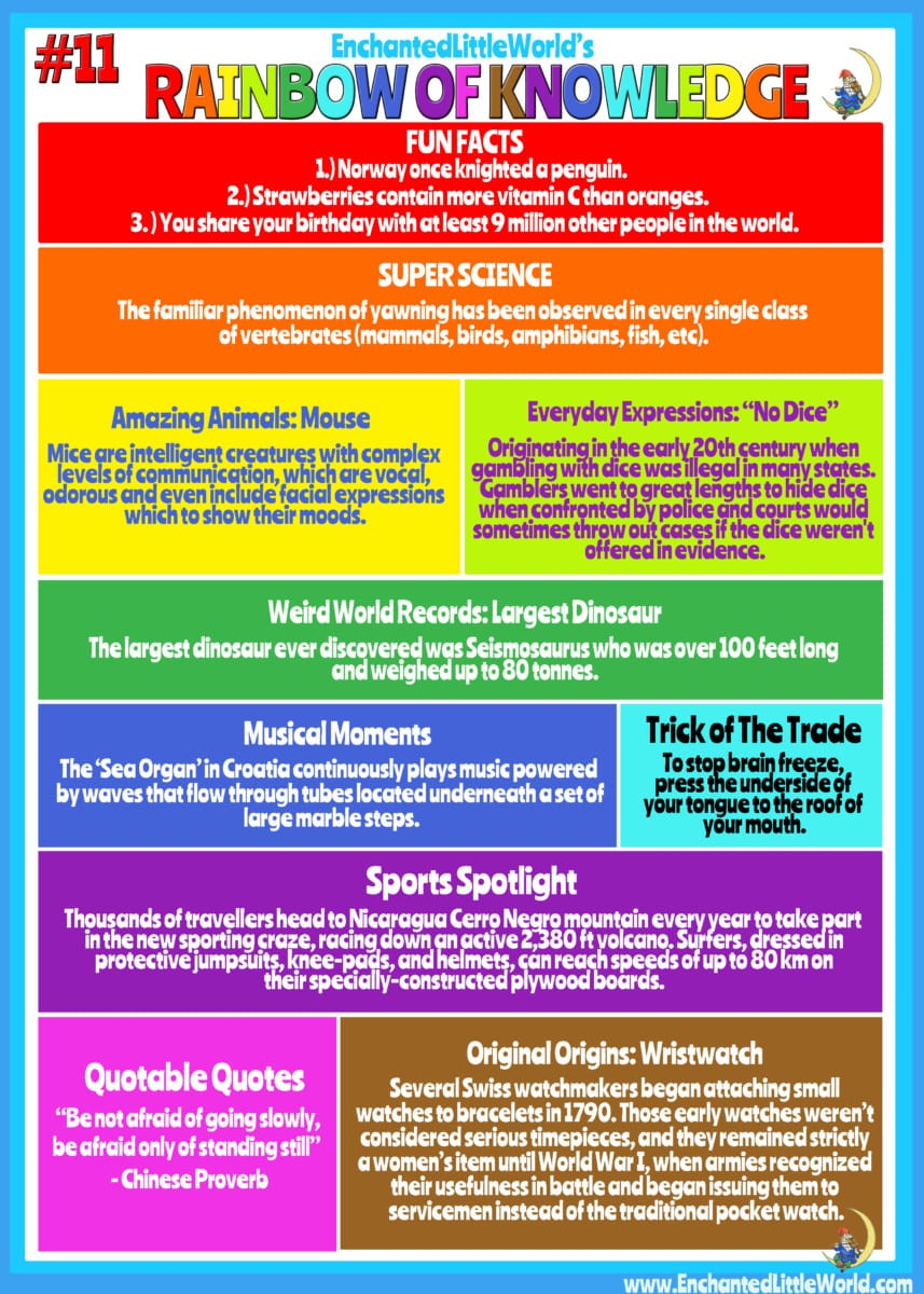Rainbow of Knowledge #11 Infographic - Enchanted Little World