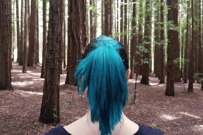 Warburton Redwood Forest Hair
