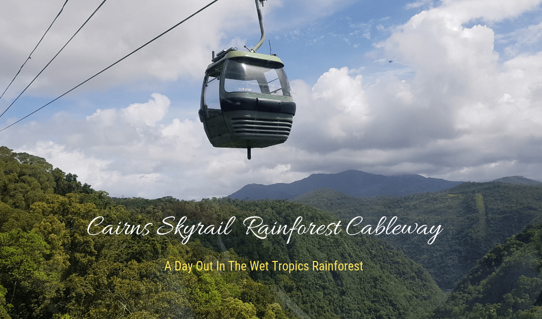Cairns Skyrail Rainforest Cableway – A Day Out In The Wet Tropics Rainforest