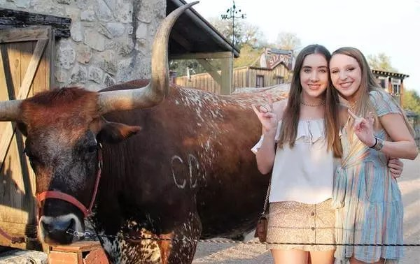 Guests with Woodrow the Texas Longhorn