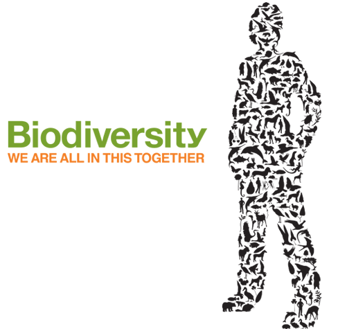 Educational programs focus on Costa Rica biodiversity